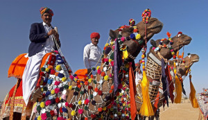 Hidden Gems of Rajasthan