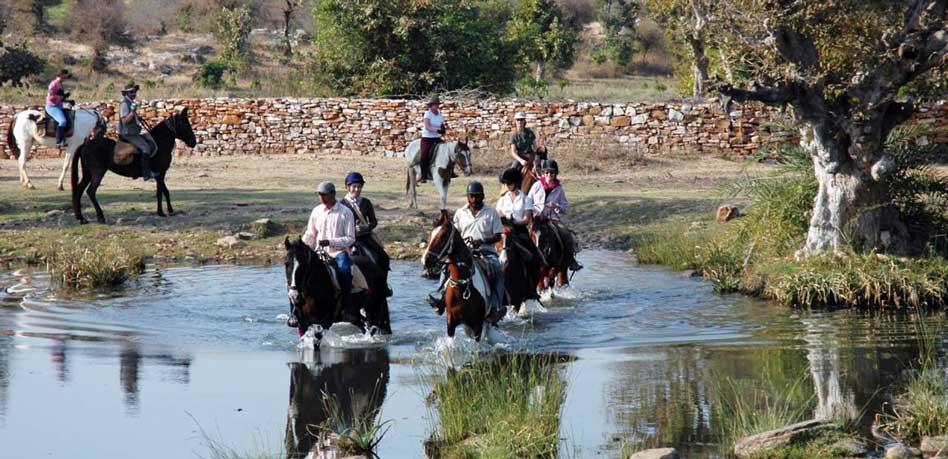 Rajasthan_Horse_safari
